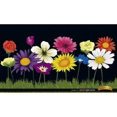 Flores en el fondo de la hierba