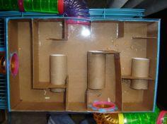 Laberinto para hamsters hecho con tubos de papel higiénico