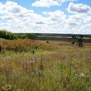 Autumn on the Prairie at Nachusa Grasslands