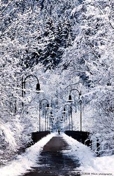☆ Snowy Bridge.。Fussen, Germany :→: Photographer Jorge Maia ☆
