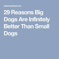 29 Reasons Big Dogs Are Infinitely Better Than Small Dogs