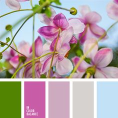 """""""natural"""" color combination of this palette is suitable for the decoration of the nursery. Little princess look and feel of these quiet, not flashy pink shades."""