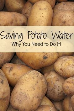 Saving potato water? Seems like a rather odd thing to do...here's why you need to start today!