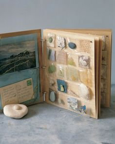 Seashore Scrapbook Anything small -- seaside flotsam, pressed leaves, or souvenirs from a museum -- can be assembled in 35-millimeter slide sleeves for clear viewing; just stitch up the pockets. Birch ply, cut to fit, separates the sleeves. A shell, glued to thicker wood, makes a strong cover, literally and visually.