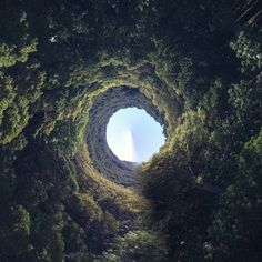 Portal to and from another world
