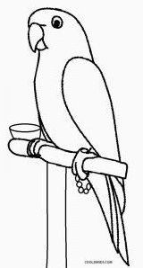 Parrot Coloring Sheets printable parrot coloring pages for kids Parrot Coloring Sheets. Here is Parrot Coloring Sheets for you. Parrot Coloring Sheets coloring pages parrot colouring to print page dexandraclub. Puppy Coloring Pages, Bird Coloring Pages, Coloring Sheets For Kids, Coloring Pages For Kids, Kids Coloring, Free Coloring, Coloring Books, Drawing Pictures For Kids, Easy Drawings For Kids