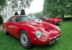 Alfa Romeo Zagato Meeting!
