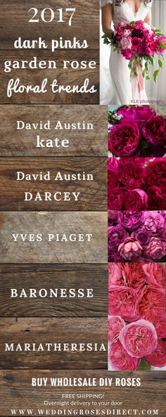 2017 Garden Rose BOUQUET trends! Your  #1 source for DIY Garden Roses! www.weddingrosesdirect.com #gardenrosebouquet #diyflowers #davidaustin  #bouquet #diybouquet #pinkroses #pinkgardenroses #fuchsiaroses