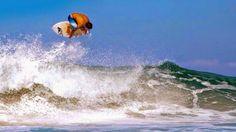 ÁJAX - NOTÍCIAS: SURF EM MARESIAS