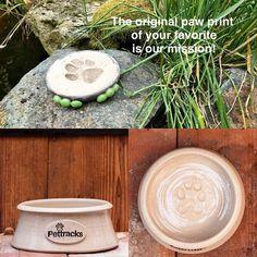 Cat Supplies, Pet Bowls, Ceramics, The Originals, Dogs, Instagram, Ceramica, Pottery, Pet Dogs