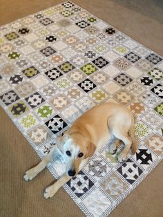 Churn dash quilt. Neutrals. Quilty pattern. Love it!! So does the pup.