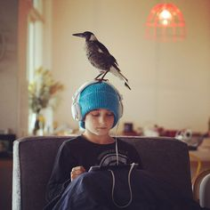After being rescued and nursed back to health by a young family in Newport, Australia, a magpie named Penguin has become a regular visitor and friend at the Bloom family's home, playing with them and coming in to hide when it rains.