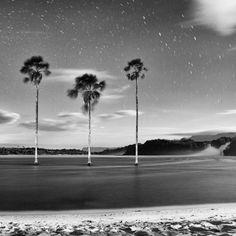 Laguna de Canaima. Edo. Bolívar. Venezuela. #Venezuela #Viajes #EstadoBolívar #Canaima #Travel #BlancoyNegro #B&W #Laguna #Agua #Fineartprint #art #Nature #Nationalpark #Parquenacional #Parquenacionalcanaima #Travelstyleguide #ComparteMovistar #Nikon_top #Noche #Night #prodavincifotos #Outdoor #Forest #Selva #Parquecanaima #fineart #natgeotravel #natgeotravelpic #elnacionalweb
