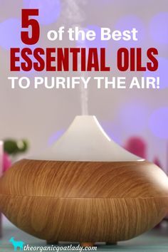 Naturally purify the air in your home using essential oils! Essential oils to clean your home! #EssentialOils , #HealthyLiving , #Handmade Essential Oils For Mosquitoes, Essential Oils For Cough, Essential Oils Christmas, Essential Oil Diffuser, Essential Oil Blends, Oil For Cough, Aromatherapy Recipes, Wax Warmers, Diffuser Recipes