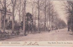 Wandelen over de Lindelaan in het oude Bussum uit de verzameling van Frans Roeten - Hans Roeten - Picasa Webalbums