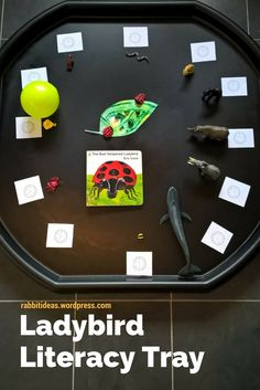 Blog post- Eric Carle's The Bad Tempered Ladybird explored in a tray!