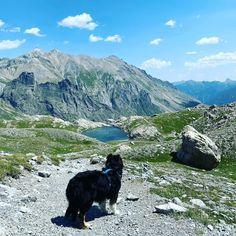 Camping, Bergen, Mountains, Nature, Travel, Dog Runs, Sunset Beach, Rv Camping, Travel Alone