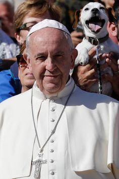 You can't help but smile along with a dog who was recently photographed with a huge grin as he was held over the pope's shoulder in Vatican Square.