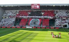 """Spartak Trnava vs Austria Wien """"You don't care about football, you care about money! You Dont Care, Baseball Field, Don't Care, Austria, Football, Money, Around The Worlds, Soccer, Futbol"""