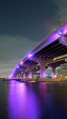 This bridge was soo pretty at night! I love Miami! Miami Beach, Miami City, Downtown Miami, Beautiful Places, Beautiful Pictures, Cities, Miami Florida, South Florida, Florida Living