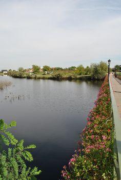 Comana Recreational and Adventure Park  -- Bridge of wishes