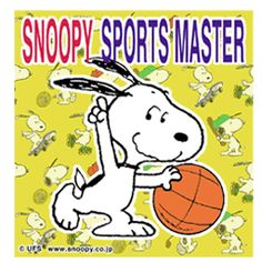 Snoopy Sports Master