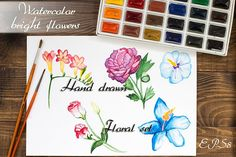 Watercolor flowers Graphics Watercolor vector floral collection of 5 flowers- High resolution, 300 dpi- Instant Digital D by Wedphoto