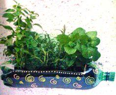 Horta Vertical de Garrafa Pet: Dicas de Como Fazer, Que Plantar
