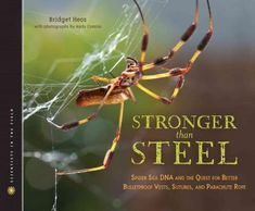 Stronger Than Steel: Spider Silk DNA and the Quest for Better Bulletproof Vests, Sutures, and Parachute Rope (Scientists in the Field)