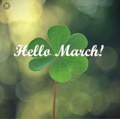 Oh hello march. Today we get to experience all 4 seasons in one day! But it will be a good day :) Seasons Months, Days And Months, Seasons Of The Year, Months In A Year, 12 Months, March Month, New Month, Hello March Quotes, Month Of March Quotes