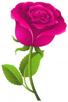 Rose Flower Pictures, Love Rose Flower, Flower Images, Flower Art, Beautiful Flowers Images, Beautiful Flowers Wallpapers, Beautiful Rose Flowers, Wallpaper Nature Flowers, Rose Flower Wallpaper