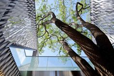 Huaxin Business Center // Scenic Architecture Office