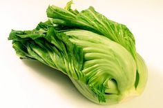 """Asian Green """"Kekkyu Takana"""" (Brassica juncea) small head with a tightly wrapped core, prized for pickling. Use in stir-fry and soup."""