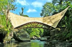 a community-funded bamboo bridge welcomes visitors to the green school in bali, using traditional construction methods erected over eight months. Architecture Design, Bamboo Architecture, Tropical Architecture, Amazing Architecture, Sustainable Architecture, Millenium, Millennium Bridge, Green School Bali, Ubud