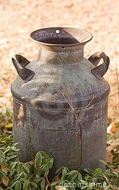 Antique Milk Can - use this as the pedestal for the galvanized tub that will be holding the glass milk bottles at the cookie table....yes?
