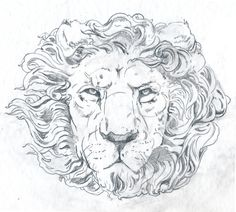 Illustration / BLOG_j_OAKLEY_LION_lin