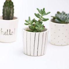 Succulent plant pot by BerriesforBella