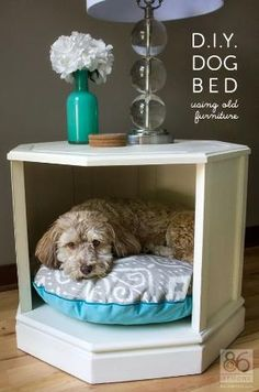 Dog bed from repurposed old end table, side table; paint and ad pillow; Upcycle, Recycle, Salvage, diy, thrift, flea, repurpose!  For vintage ideas and goods shop at Estate ReSale & ReDesign, Bonita Springs, FL by Clara Colluns