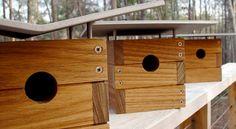 Modern birdhouses, neutra birdhouse, rapson birdhouse, davidson birdhouse, modernist birdhouse
