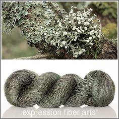 Expression Fiber Arts, Inc. - LICHEN 'LUSTER' SUPERWASH MERINO TENCEL SPORT YARN , $24.00 (http://www.expressionfiberarts.com/products/lichen-luster-superwash-merino-tencel-sport.html)