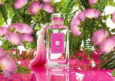 Распив парфюмерии, отливанты: Jo Malone Silk Blossom