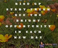 Every day is a new day… Do not give up!  #InspiringQuotes #thoughtoftheday #TalkingStick