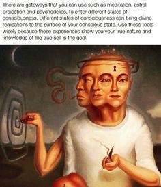 Spiritual Wisdom, Spiritual Growth, Spiritual Awakening, Intuition, Jungian Psychology, Indian Philosophy, States Of Consciousness, Abraham Hicks Quotes, Knowledge And Wisdom