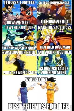 A powerful meme picture highlighting the relationship between Dragon Ball Z's Son Goku and Vegeta.