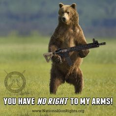 Sons of Liberty: Wisdom Meme, Patriotic Words, Gun Humor, Dead Hand, Molon Labe, Ak 47, Brown Bear, 2 In, Liberty