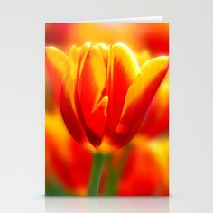 Tulip Stationery Cards by Tracie Brown - $12.00