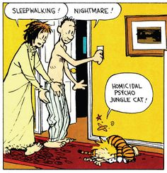 Calvin and Hobbes, Homicidal Psycho Jungle Cat!
