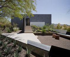 Amazing Contemporary Design Exterior With Modern Architecture And Best Concept For Desert Garden House Decor Modern House Design And Simple Staircase Residential Architecture, Landscape Architecture, Interior Architecture, Landscape Design, Garden Design, Desert Landscape, Building Architecture, Contemporary Landscape, Contemporary Architecture