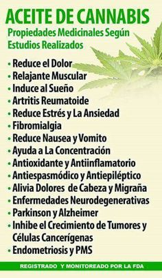 Witch Herbs, Medicinal Plants, Natural Medicine, Things To Know, Young Living, Detox, Alternative, Remedies, Healing