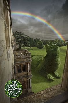 The Topiary Cat contemplating The Rainbow Bridge over which poor Tolly went recently.